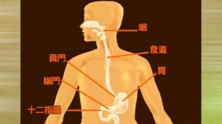 胃酸―胃酸の異常には「内関穴」