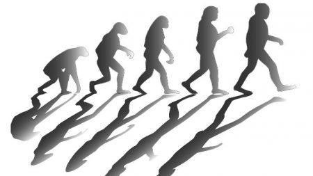 【人類の起源】中国起源説の決定的証拠「ダーリー・スカル」から新事実