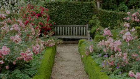 【秘密の花園】1年前に死んだ夫から届いた最後のメッセージ