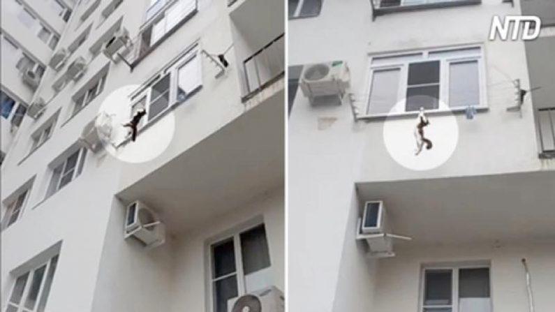 【驚愕】高層マンションから落下したネコ 下の階の物干し竿にしがみつく