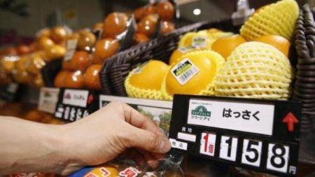 消費増税、リーマンのようなことない限り来年10月に実施=菅官房長官