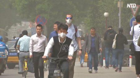 【動画ニュース】中国製マスクから基準を上回る発がん性物質「でもどうしようもない」