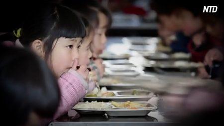【動画ニュース】四川小学校カビ食材事件 全国の古米が学食で消化
