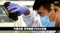 【中国ニュース速報】遼寧省でH5N1亜型鳥インフルエンザ確認/中国当局 世界範囲でDNA収集/新年号「令和」中国で2018年に商標登録