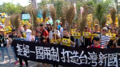 【動画ニュース】台湾・高雄で一国二制度反対デモ 中共に協力する市長を非難