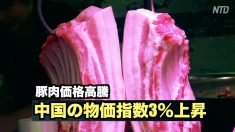 【動画ニュース】豚肉価格高騰 中国の物価指数3%上昇