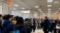 【動画ニュース】上海復旦大学で学生らが抗議 大学憲章から「思想の自由」などが削除