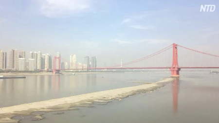 長江の川底が露出 水不足は人災か(下)