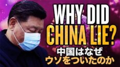 中共ウイルスの隠蔽 中国はなぜウソをついたのか?【チャイナ・アンセンサード】