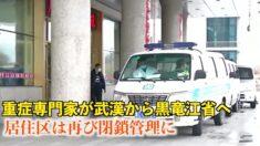 黒竜江省の各地に疫病が蔓延 地元政府は隠蔽