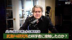 スティーブ・バノン:多くの中国人が告発している【Zooming in】