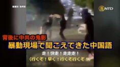ホワイトハウス付近の放火現場で飛び交う中国語 暴動の背後に中共の鬼影