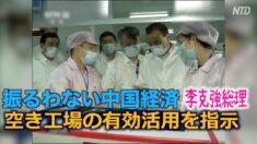 振るわない中国経済 李克強総理が空き工場の有効活用を指示【禁聞】
