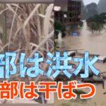 南部は洪水 北部は干ばつ 東北部の農民「収穫は絶望的」