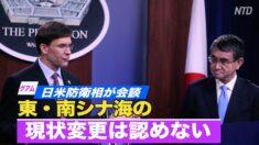 日米防衛相が会談 「東・南シナ海の現状変更は認めない」