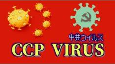 コロナウイルスを「CCPウイルス」と呼ぶ理由