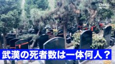 中共ウイルスによる武漢の死者数 お墓参りの人波で垣間見ることができる