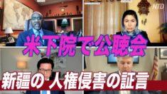 証人が中共の残虐行為を証言=米下院の新疆の人権侵害に関する公聴会