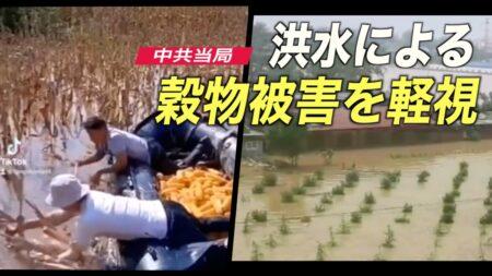 中共当局 洪水による穀物被害を軽視