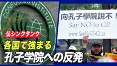 「各国での孔子学院への反発強まる」=仏シンクタンク